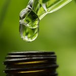 Medical Cannabis tincture