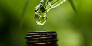 Medical Cannabis tincture