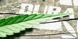Marijuana Packaging
