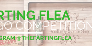 Farting flea logo competition